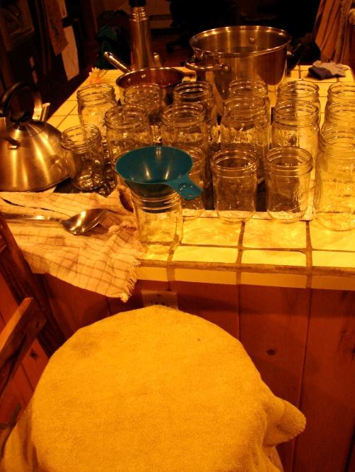 Setting up to jar the sauerkraut.